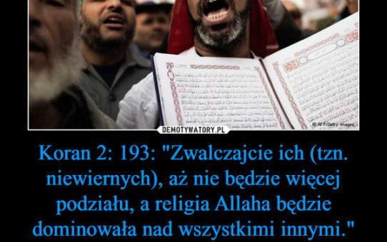 Dramatyczne statystyki religii pokoju: 882 osoby zamordowano dla Allaha w lutym 2019 r.