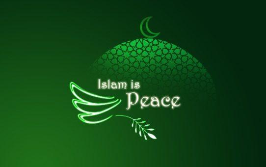 Islam niesie pokój, a krew się leje