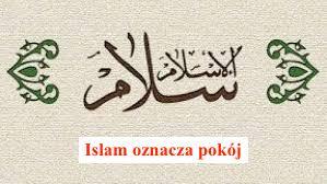 Osiągnięcia islamu w 2020 r.