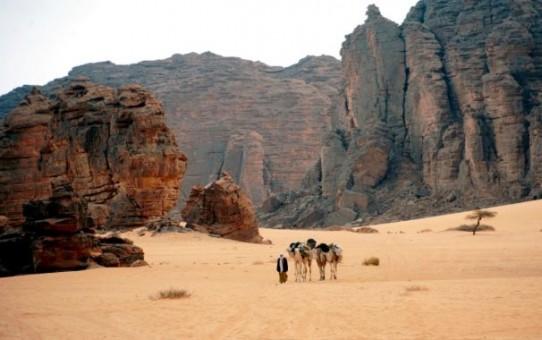 Kader z Algierii