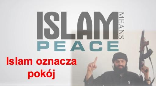 Religia pokoju: 1199 zabitych dla Allaha w kwietniu 2017